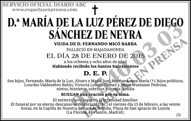 María de la Luz Pérez de Diego Sánchez de Neyra